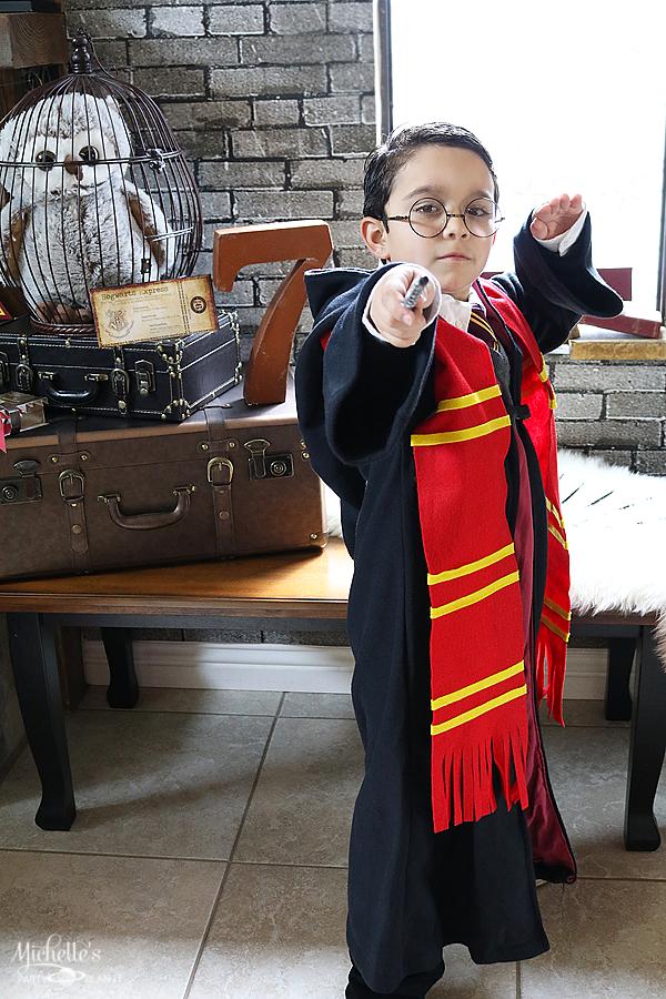 Harry Potter Wizard Costume