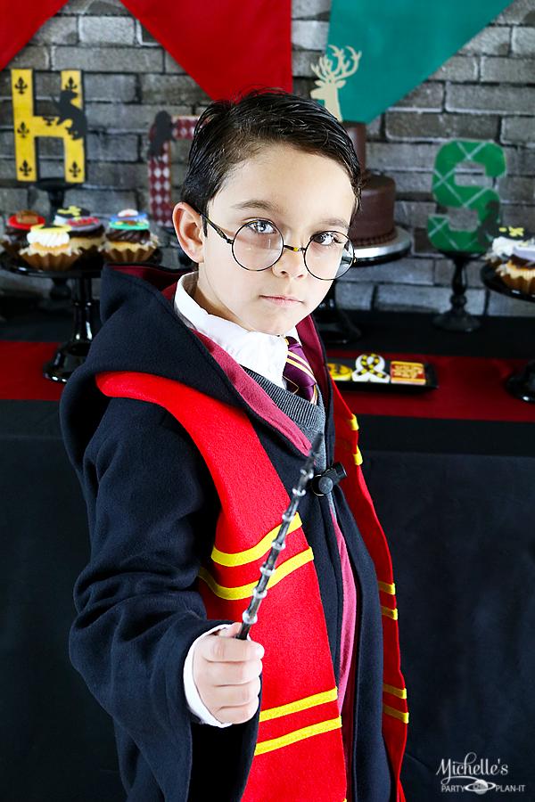 Harry Potter Dress Up Costume