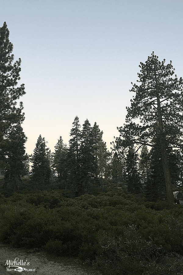 Campsite review